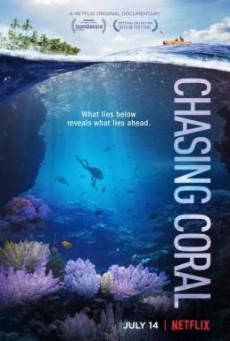 Chasing Coral ไล่ล่าหาปะการัง (2017) บรรยายไทย