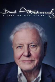 David Attenborough- A Life on Our Planet เดวิด แอทเทนเบอเรอห์- ชีวิตบนโลกนี้ (2020) NETFLIX บรรยายไทย